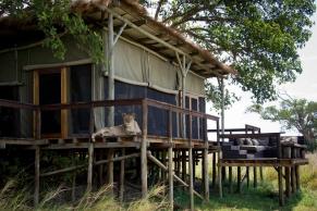 sambia-shumba-camp-7