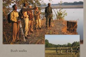 Kafunta Safaris Presentation.039