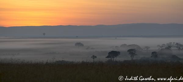 Sunrise in the Massai Mara, Afari Fotoreise nach Kenia, Canon EOS, 1 D Mark IV, Ef 70-200mm, f/ 2.8, ISO 400, 160mm, 1/ 1000 sek. f/ 4.0